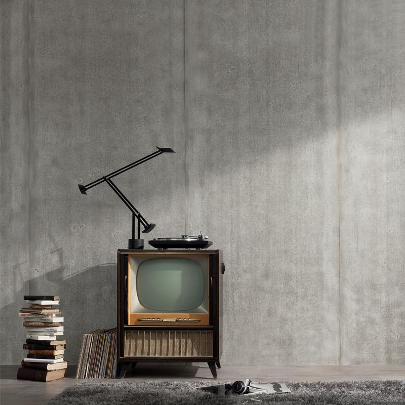 Salon avec avec panneaux muraux en beton naturel